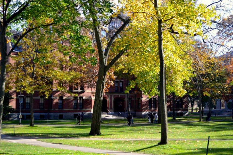 campusharvardvisite