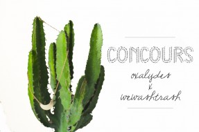 concours-oxalydeswe