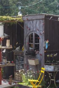 jardin-salonvivrecotesud