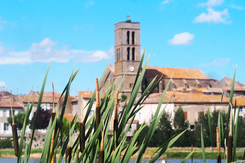 visite-trebes-cathare