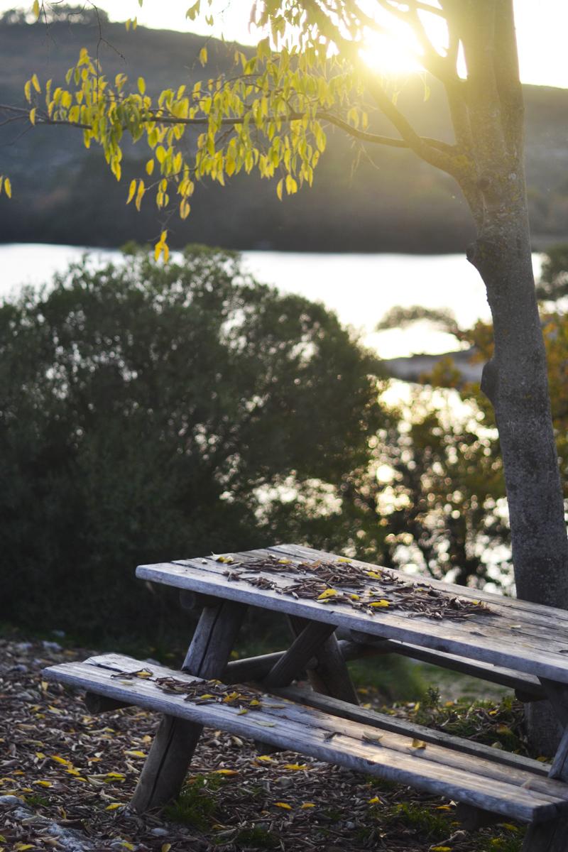 balade-automne-sud