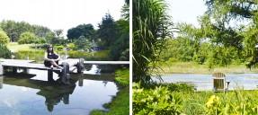 jardinbotanique
