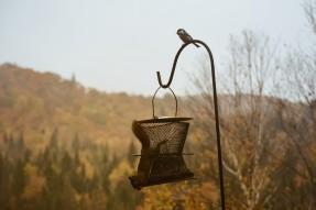 automne_chalet_quebec