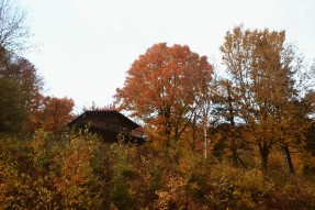 chalet_automne_montreal
