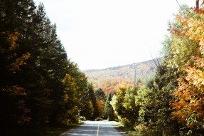 ontheroad_fall