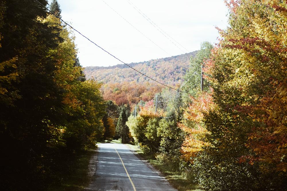 road_fall_quebec