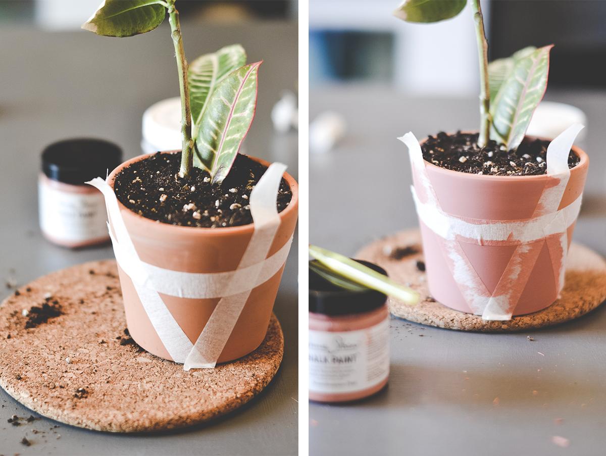 diy-plantes-blogdeco