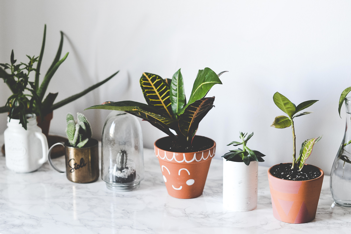 faire-pot-plante-diy