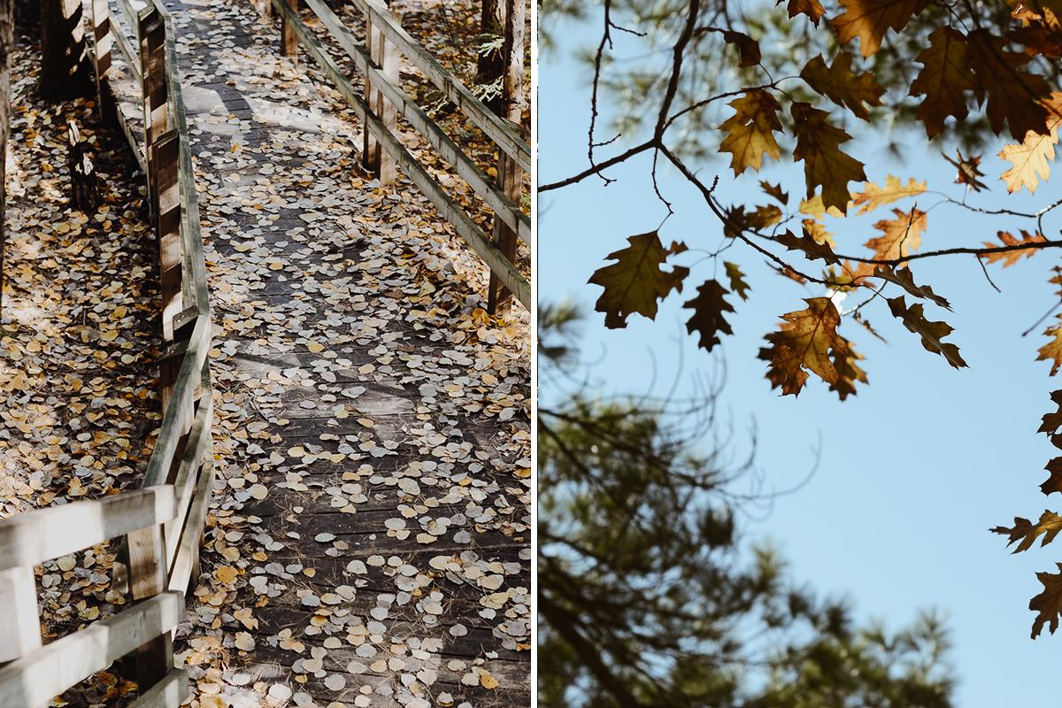 parc-chutes-saint-ursule-blogvoyage