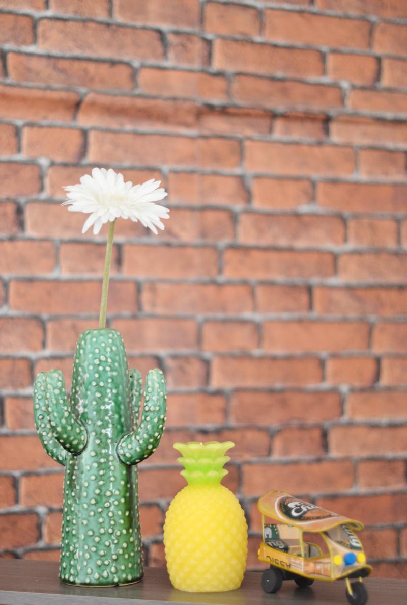 deco-serax-cactus-blog