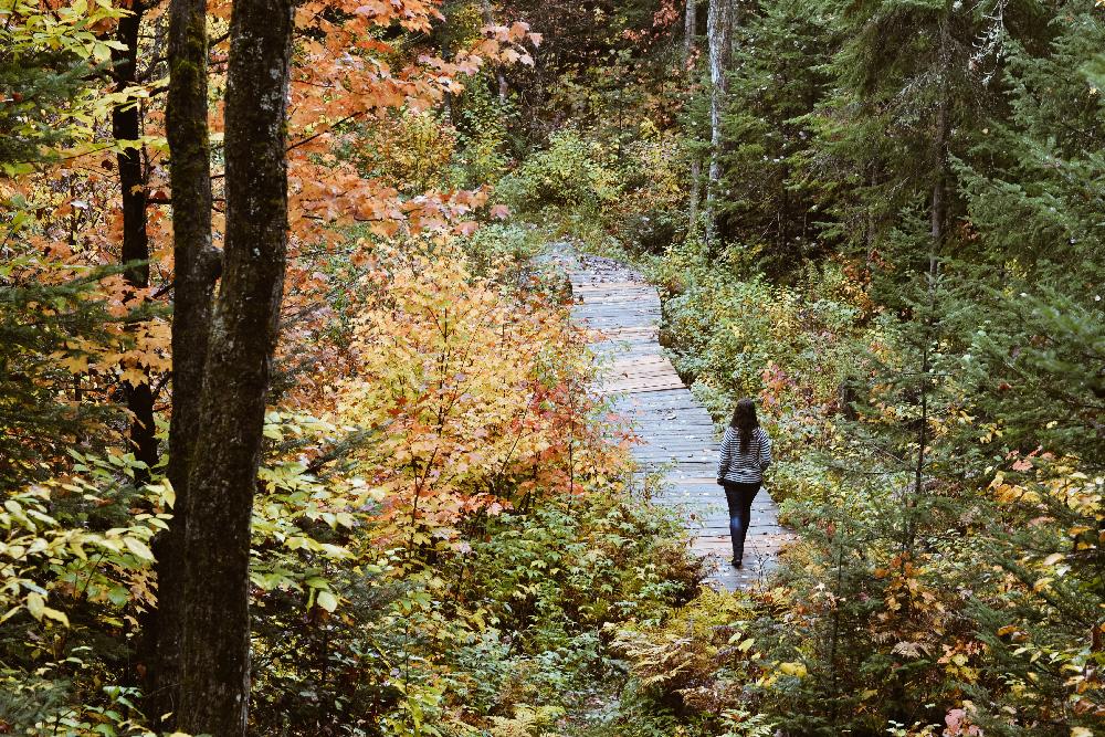 balada_automne_blogvoyage