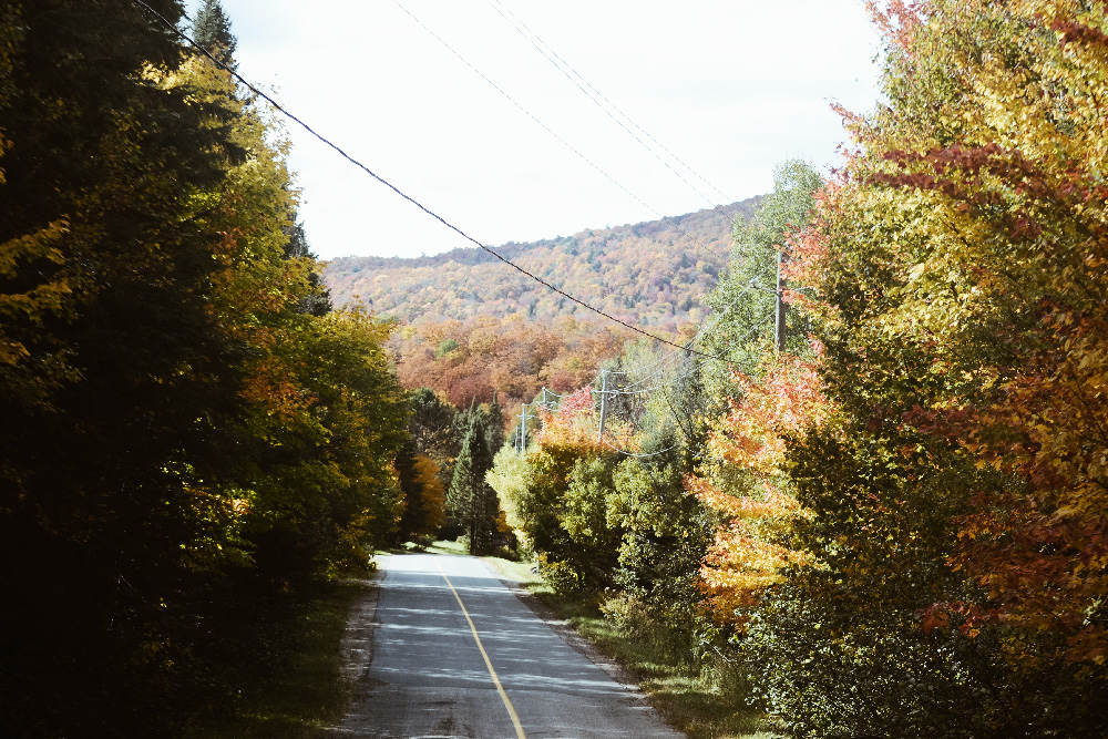road_fall_quebec