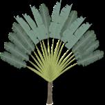 tree-09-152-191474