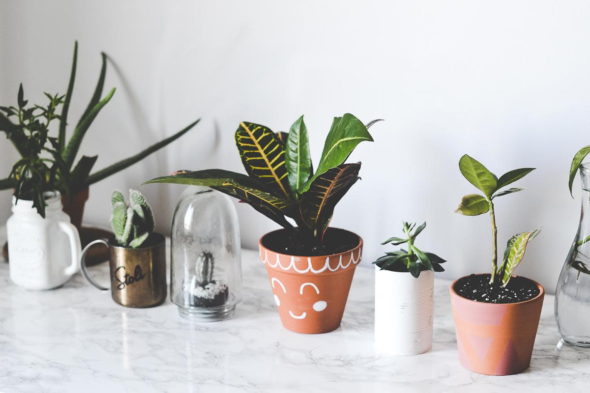 faire-pot-plante-diy