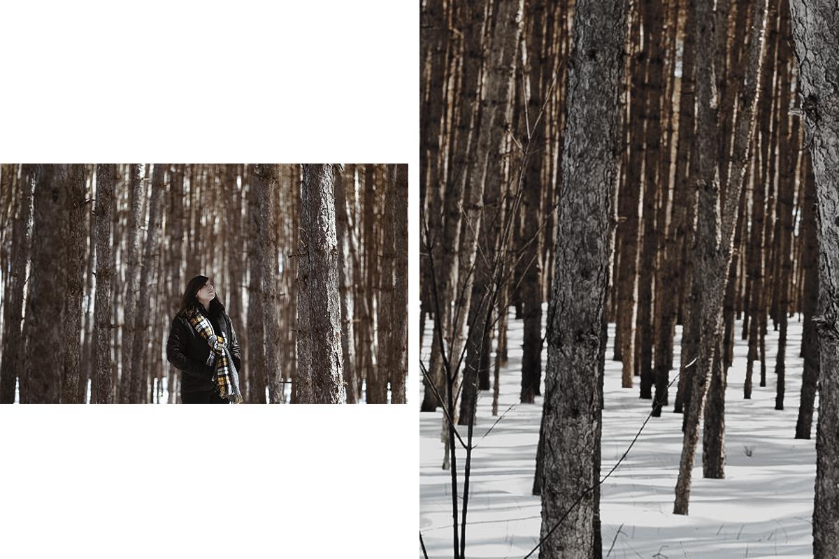 activites fin hiver quebec